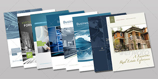Bifold Brochure Bundle | Volume 1 đẹp