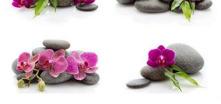 Spa massage stones and orchid isolated on the white background